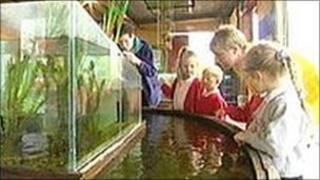 Children visit the Earth Centre