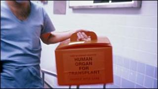 Organ for transplant