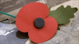 Royal British Legion poppy