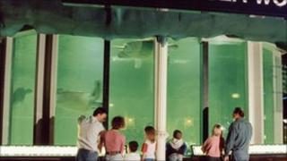 Blackpool Tower Aquarium