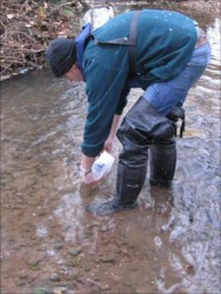 Oliver Brown from the Environment Agency releasing the crayfish into a river