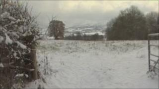 Snowy field in Powys