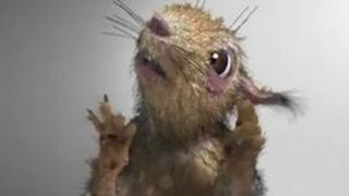 "A still from Russia's ""demon squirrel"" cartoon"