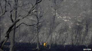 Rescue workers walk among trees burnt trees in northern Israel