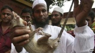 File photo of a Bangladeshi farmer with a dead rat
