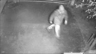 CCTV image of tree theft