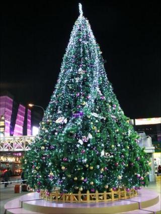 Christmas tree. Photo: Yumo Chen