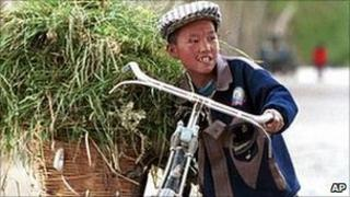 A Chinese boy struggles to balance a bicycle loaded up with grasses for animal feed