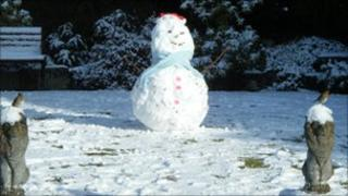 Snowman and robins in Vanessa Hibberd's garden in Christchurch