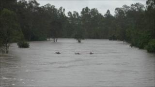 Three teenagers float down the Bremer river on air mattresses on 27 December 2010 (Image: Courtesy of Queensland Police)