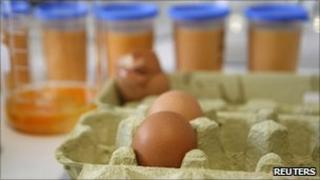 Eggs due to be tested for contamination in Muenster (4 Jan 2011)