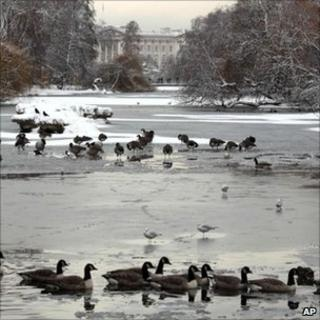 St James's Park and Buckingham Palace