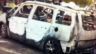 Mr Trotman's car after the fire
