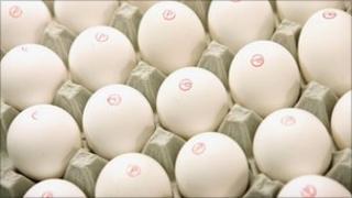 eggs (generic)