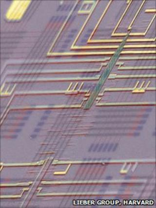 False colour SEM of nanowire chip (Lieber group, Harvard)