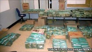 Marijuana allegedly seized from Pizza Gigi - Toronto police department handout image