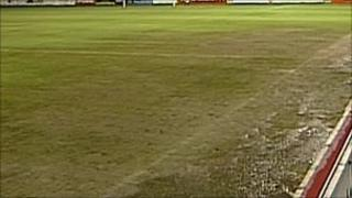 Exeter City FC pitch
