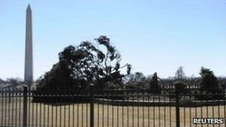 "The US ""National Christmas Tree"" lies toppled, 19 February"