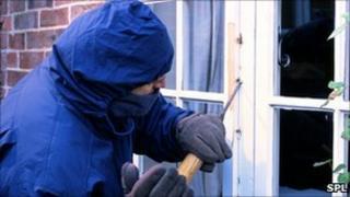 Generic burglar