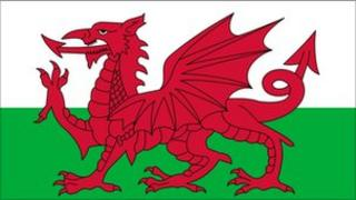 The red dragon flag
