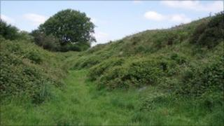 Maesbury Hill Fort, Somerset
