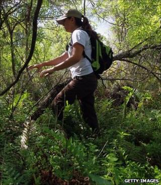 Library image of a biologist carrying out a survey of invasive species (Getty Images)