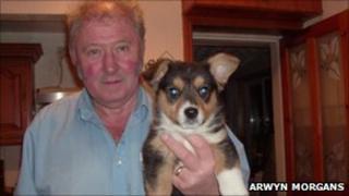 Arwyn Morgans and Cardiganshire corgi (Dewi)