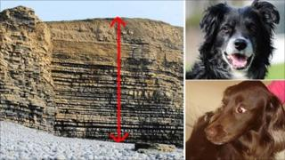 The cliff face at Southerndown and the dogs Sasha and Moby