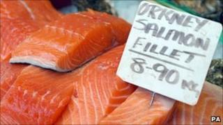 Orkney salmon