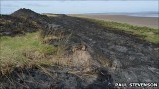Scene of Holy Island dune fire (pic courtesy of Paul Stevenson)