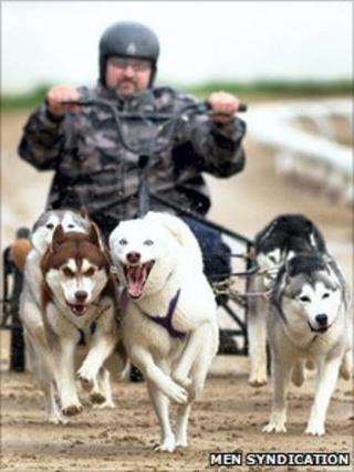 Steve Hall and Huskies