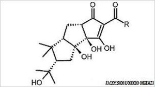 Tricyclocohumol (Journal of Agricultural and Food Chemistry)