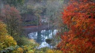 Hackfall woodland near Ripon. Copyright: The Woodland Trust
