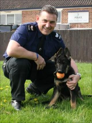 Police puppy