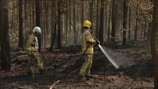 Firefighters damping down the woodland fire