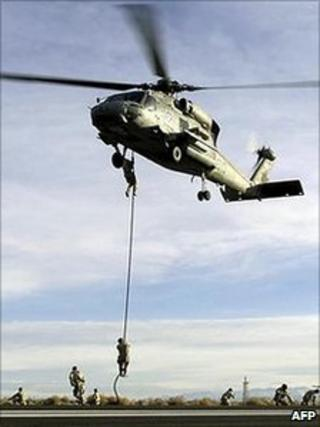 UN Navy Seals practise (file image)