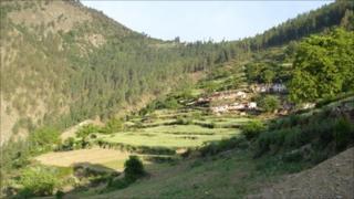 Terraces in Western Nepal