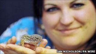 Phillipa Durrant with Sahara the gecko