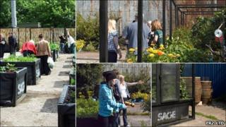 Possil Concrete Garden