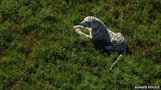 Police picture of the toy from the helicopter