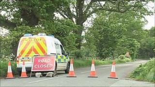 Scene of tree death in Corbridge