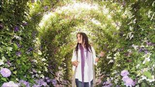 Raymond Evison's Guernsey Clematis garden at the RHS Chelsea Flower Show 2011