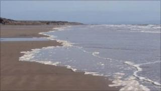Beaches across Wales have been affected by the algae
