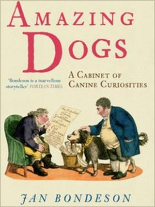 The cover of Jan Bondeson's Amazing Dogs - A Cabinet of Canine Curiosities
