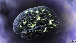 Brain signals