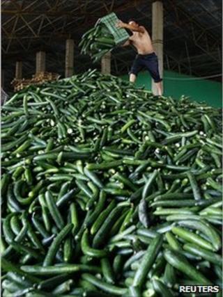 Cucumbers thrown away in Romania, 6 Jun 11