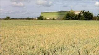 Fields at Cardington
