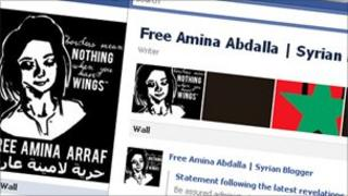 screengrab of Free Amina Facebook page