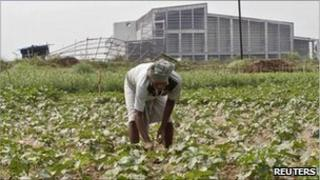 A farmer works with his crop in front of the closed Tata Motors Nano car factory in Singur, north of Calcutta, in this April 27, 2011 file photo.