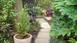 Neighbours show their gardens for National Gardens Scheme